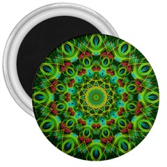 Peacock Feathers Mandala 3  Button Magnet by Zandiepants
