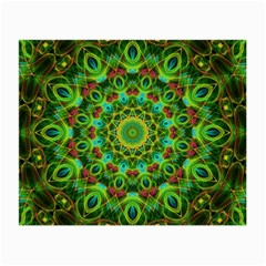 Peacock Feathers Mandala Glasses Cloth (small, Two Sided) by Zandiepants