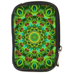 Peacock Feathers Mandala Compact Camera Leather Case by Zandiepants