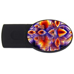 Winter Crystal Palace, Abstract Cosmic Dream Usb Flash Drive Oval (2 Gb) by DianeClancy