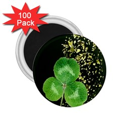 Clover 2 25  Button Magnet (100 Pack) by Rbrendes