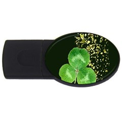 Clover 2gb Usb Flash Drive (oval) by Rbrendes