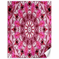 Twirling Pink, Abstract Candy Lace Jewels Mandala  Canvas 12  X 16  (unframed) by DianeClancy