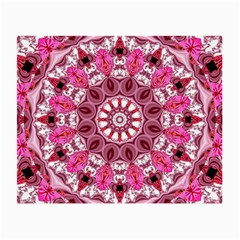 Twirling Pink, Abstract Candy Lace Jewels Mandala  Glasses Cloth (small, Two Sided) by DianeClancy
