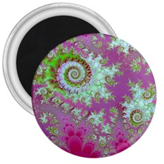 Raspberry Lime Surprise, Abstract Sea Garden  3  Button Magnet by DianeClancy