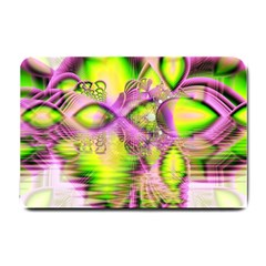 Raspberry Lime Mystical Magical Lake, Abstract  Small Door Mat by DianeClancy