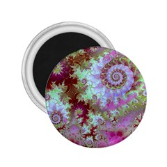 Raspberry Lime Delight, Abstract Ferris Wheel 2 25  Magnet by DianeClancy