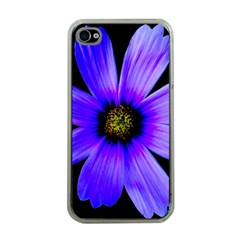Purple Bloom Apple Iphone 4 Case (clear) by BeachBum