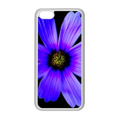 Purple Bloom Apple Iphone 5c Seamless Case (white) by BeachBum