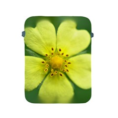 Yellowwildflowerdetail Apple Ipad Protective Sleeve by bloomingvinedesign