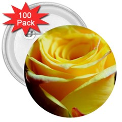 Yellow Rose Curling 3  Button (100 Pack) by bloomingvinedesign