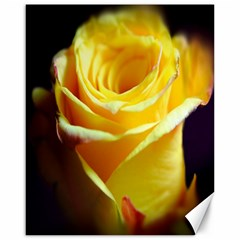 Yellow Rose Curling Canvas 16  X 20  (unframed) by bloomingvinedesign