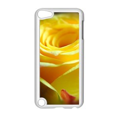 Yellow Rose Curling Apple Ipod Touch 5 Case (white) by bloomingvinedesign