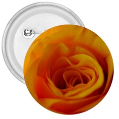Yellow Rose Close Up 3  Button by bloomingvinedesign