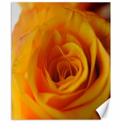 Yellow Rose Close Up Canvas 8  X 10  (unframed) by bloomingvinedesign