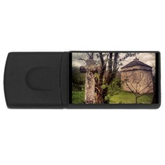 Toulongergues2 2GB USB Flash Drive (Rectangle) by marceau