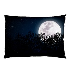 Night time landscape Pillow Case by Contest1759207