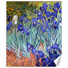 Vincent Van Gogh Irises Canvas 8  X 10  (unframed) by MasterpiecesOfArt