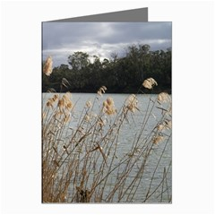 water reeds Greeting Card by sarajarmaine