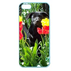 Black Gsd Pup Apple Seamless Iphone 5 Case (color) by StuffOrSomething