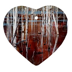 Automn Swamp Heart Ornament (two Sides) by cgar
