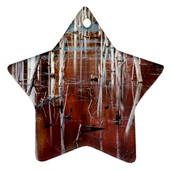 Swamp2 Filtered Star Ornament (two Sides) by cgar