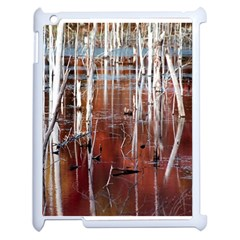 Swamp2 Filtered Apple Ipad 2 Case (white) by cgar
