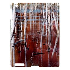 Swamp2 Filtered Apple Ipad 3/4 Hardshell Case by cgar