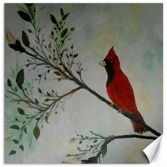 Sweet Red Cardinal Canvas 16  X 16  (unframed) by rokinronda