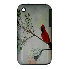 Sweet Red Cardinal Apple Iphone 3g/3gs Hardshell Case (pc+silicone) by rokinronda