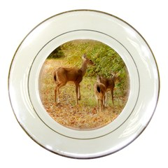 Deer In Nature Porcelain Display Plate by uniquedesignsbycassie