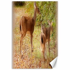 Deer In Nature Canvas 12  X 18  (unframed) by uniquedesignsbycassie