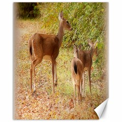 Deer in Nature Canvas 11  x 14  (Unframed) by uniquedesignsbycassie