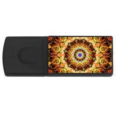 Ochre Burnt Glass 4gb Usb Flash Drive (rectangle) by Zandiepants