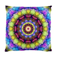Rainbow Glass Cushion Case (single Sided)  by Zandiepants