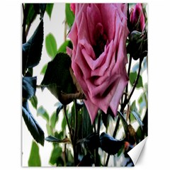 Rose Canvas 12  X 16  (unframed) by Rbrendes