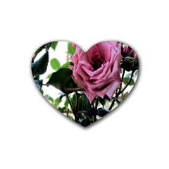 Rose Drink Coasters 4 Pack (Heart)  by Rbrendes