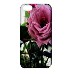 Rose Apple Iphone 5c Hardshell Case by Rbrendes