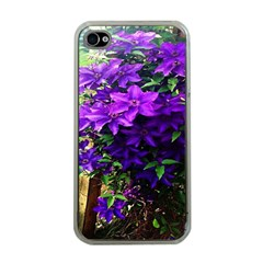 Purple Flowers Apple Iphone 4 Case (clear) by Rbrendes