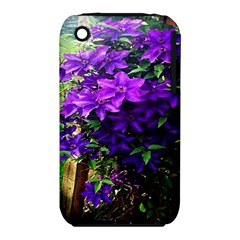 Purple Flowers Apple iPhone 3G/3GS Hardshell Case (PC+Silicone) by Rbrendes