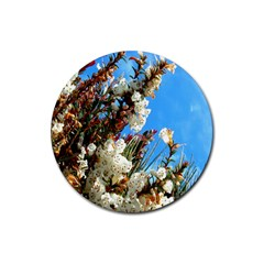Australia Flowers Drink Coaster (round) by Rbrendes