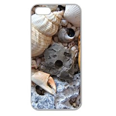 Beach Treasures Apple Seamless Iphone 5 Case (clear) by StuffOrSomething