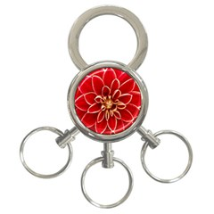 Red Dahila 3 Ring Key Chain by Colorfulart23