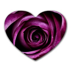 Deep Purple Rose Mouse Pad (heart) by Colorfulart23