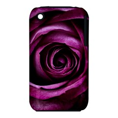 Deep Purple Rose Apple Iphone 3g/3gs Hardshell Case (pc+silicone) by Colorfulart23