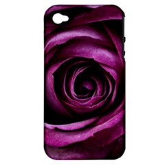 Deep Purple Rose Apple Iphone 4/4s Hardshell Case (pc+silicone) by Colorfulart23