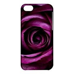 Deep Purple Rose Apple Iphone 5c Hardshell Case by Colorfulart23
