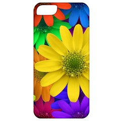 Gerbera Daisies Apple Iphone 5 Classic Hardshell Case by StuffOrSomething