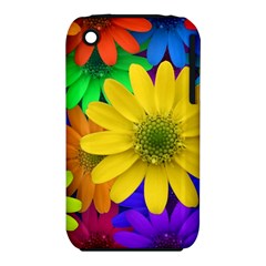 Gerbera Daisies Apple Iphone 3g/3gs Hardshell Case (pc+silicone) by StuffOrSomething