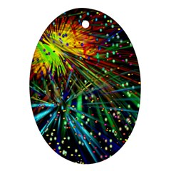 Exploding Fireworks Oval Ornament (two Sides)
